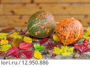 Тыквы и осенние листья. Стоковое фото, фотограф Станислав Самойлик / Фотобанк Лори