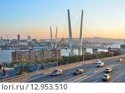 Купить «Вечерний вид моста во Владивостоке через залив Золотой Рог», фото № 12953510, снято 22 апреля 2019 г. (c) Овчинникова Ирина / Фотобанк Лори