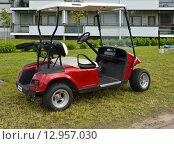 Купить «Автомобиль для гольфа (также машинка для гольфа, гольф-карт от англ. golf cart или гольф-кар от англ. golf car)», фото № 12957030, снято 18 июля 2015 г. (c) Валерия Попова / Фотобанк Лори