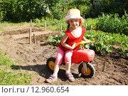 Купить «Маленькая девочка с игрушечным велосипедом около огородных грядок», фото № 12960654, снято 24 июня 2015 г. (c) Александр Мишкин / Фотобанк Лори