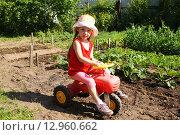 Купить «Маленькая девочка на игрушечном велосипеде играет в огороде», фото № 12960662, снято 24 июня 2015 г. (c) Александр Мишкин / Фотобанк Лори