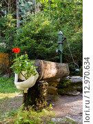 Купить «rustic rural water pump with flowers in bidet», фото № 12970634, снято 21 марта 2019 г. (c) PantherMedia / Фотобанк Лори