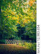 Купить «Autumn scenery with a bridge», фото № 12983654, снято 22 мая 2019 г. (c) PantherMedia / Фотобанк Лори