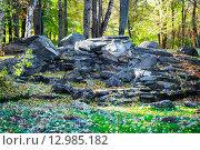 Камни в лесу. Стоковое фото, фотограф Sergey Borisov / Фотобанк Лори