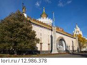 Купить «Москва. ВДНХ. Павильон «Украина»», фото № 12986378, снято 29 октября 2015 г. (c) Галина Савина / Фотобанк Лори