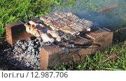 Купить «Приготовление шашлыка на кирпичах», видеоролик № 12987706, снято 20 марта 2019 г. (c) FotograFF / Фотобанк Лори