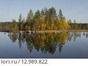 Осень в Карелии. Стоковое фото, фотограф Максим Судоргин / Фотобанк Лори
