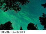 Звездное небо. Стоковое фото, фотограф Максим Судоргин / Фотобанк Лори