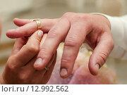 Купить «Невеста надевает золотое обручальное кольцо на палец жениху в ЗАГСе», эксклюзивное фото № 12992562, снято 6 июня 2015 г. (c) Игорь Низов / Фотобанк Лори