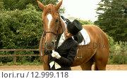 Купить «Dressage rider with her horse», видеоролик № 12999118, снято 23 июля 2019 г. (c) Wavebreak Media / Фотобанк Лори