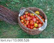 Красные и желтые помидоры в корзине стоящей на траве. Стоковое фото, фотограф Лидия Хвесюк / Фотобанк Лори