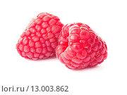 Две ягоды малины. Стоковое фото, фотограф Фрибус Екатерина / Фотобанк Лори