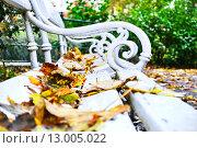 Купить «Опавшие листья на скамейке в осеннем парке», фото № 13005022, снято 3 октября 2010 г. (c) Валерий Апальков / Фотобанк Лори