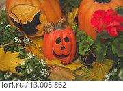 Глиняная тыква в клумбе в осенней листве. Стоковое фото, фотограф Postolatii Natalia / Фотобанк Лори