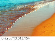 Купить «Footprint on the wet sand of the beach», фото № 13013154, снято 20 октября 2018 г. (c) PantherMedia / Фотобанк Лори