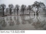 Туман в парке весной (2015 год). Стоковое фото, фотограф Екатерина Гусева / Фотобанк Лори
