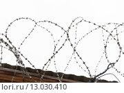 Купить «barb wire fence over gray sky», фото № 13030410, снято 30 сентября 2015 г. (c) Syda Productions / Фотобанк Лори