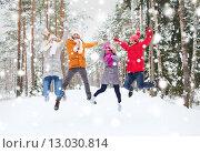 Купить «group of smiling men and women in winter forest», фото № 13030814, снято 29 декабря 2014 г. (c) Syda Productions / Фотобанк Лори