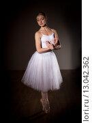Балерина в шопенке. Низкий ключ. Стоковое фото, фотограф Елена Троян / Фотобанк Лори