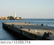 Купить «Пирс. Морской порт в Ялте», эксклюзивное фото № 13050714, снято 22 июня 2018 г. (c) Михаил Карташов / Фотобанк Лори