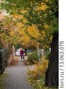 Купить «Городская улица ранней осенью», фото № 13063078, снято 28 октября 2015 г. (c) Ольга Алексеенко / Фотобанк Лори