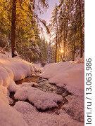 Закат солнца в зимнем лесу. Стоковое фото, фотограф Сергей Бисеров / Фотобанк Лори