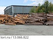 Складирование бревен на улице. Деревообрабатывающий завод, фото № 13066822, снято 27 августа 2015 г. (c) Евгений Ткачёв / Фотобанк Лори