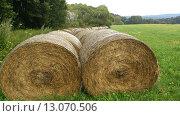 Рулоны сена на поле. Стоковое фото, фотограф Viktor Shuliak / Фотобанк Лори