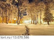 Купить «Вечер в зимнем городском парке», фото № 13070586, снято 17 июля 2019 г. (c) Зезелина Марина / Фотобанк Лори