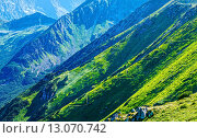 Купить «Zigzag path on Summer Tatra Mountain», фото № 13070742, снято 21 октября 2018 г. (c) Юрий Брыкайло / Фотобанк Лори
