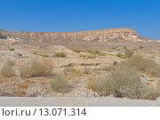 Начало пустыни. Стоковое фото, фотограф Андрей Жуков / Фотобанк Лори