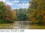 Начало осени. Стоковое фото, фотограф Андрей Жуков / Фотобанк Лори