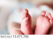Купить «Ноги новорожденного ребенка», фото № 13071786, снято 16 мая 2019 г. (c) Mikhail Starodubov / Фотобанк Лори