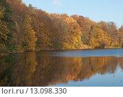 Купить «Краски осени», эксклюзивное фото № 13098330, снято 29 октября 2015 г. (c) Svet / Фотобанк Лори