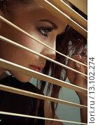 Купить «Young cute woman hiding herself behind blind», фото № 13102274, снято 26 января 2014 г. (c) Ingram Publishing / Фотобанк Лори