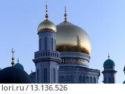 Купить «Московская соборная мечеть, одна из крупнейших мечетей России и Европы, Москва», фото № 13136526, снято 6 ноября 2015 г. (c) Владимир Журавлев / Фотобанк Лори