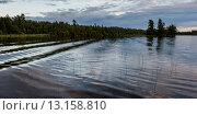 Купить «Reeds in a lake, Lake Of The Woods, Ontario, Canada», фото № 13158810, снято 26 июля 2014 г. (c) Ingram Publishing / Фотобанк Лори