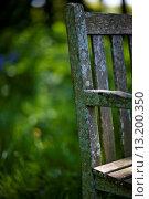 Купить «Detail of a moldy garden chair», фото № 13200350, снято 8 мая 2009 г. (c) age Fotostock / Фотобанк Лори