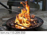 Roasting a Marshmallow over a Campfire. Стоковое фото, фотограф Keith Levit / Ingram Publishing / Фотобанк Лори