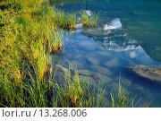 Купить «Mt Edith Cavell Jasper National Park Alberta Rocky Mountains CANADA.», фото № 13268006, снято 3 июля 2020 г. (c) age Fotostock / Фотобанк Лори