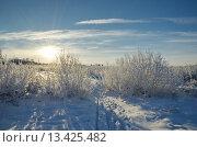 Купить «Зимний пейзаж в солнечный день», эксклюзивное фото № 13425482, снято 29 декабря 2014 г. (c) Елена Коромыслова / Фотобанк Лори