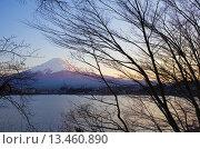Купить «Mt Fuji from Kawaguchi Lake,Kawaguchiko,Yamanashi prefecture, Japan», фото № 13460890, снято 15 июля 2020 г. (c) age Fotostock / Фотобанк Лори