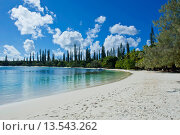 Купить «White sand beach, Bay de Kanumera, Ile des Pins, New Caledonia, Melanesia, South Pacific, Pacific», фото № 13543262, снято 22 октября 2019 г. (c) age Fotostock / Фотобанк Лори