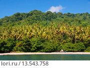 Купить «Beach on Savo Island, Solomon Islands, Pacific», фото № 13543758, снято 18 марта 2019 г. (c) age Fotostock / Фотобанк Лори