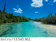 Купить «Bay de Oro, Ile des Pins, New Caledonia, Melanesia, South Pacific, Pacific», фото № 13543962, снято 22 октября 2019 г. (c) age Fotostock / Фотобанк Лори