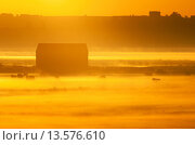 Купить «View of barn and cattle on coastal grazing marsh habitat, silhouetted at sunrise, Elmley Marshes National Nature Reserve, Isle of Sheppey, Kent, England, July», фото № 13576610, снято 27 февраля 2020 г. (c) age Fotostock / Фотобанк Лори