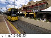 Glenelg tram, Glenelg, Adeliade, South Australia. Стоковое фото, фотограф Auscape / UIG / age Fotostock / Фотобанк Лори