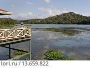 Купить «terrace of the restaurant Los Lagartos of Gamboa Resort on the Chagres River bank, Republic of Panama, Central America», фото № 13659822, снято 24 января 2019 г. (c) age Fotostock / Фотобанк Лори