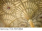 Купить «Oxford, England, UK. Christ Church College. Fan Vaulted Ceiling (1638) above the staircase (James Wyatt; 1805) to the dining hall (Hogwarts entrance hall in Harry Potter films)», фото № 13737054, снято 24 апреля 2018 г. (c) age Fotostock / Фотобанк Лори