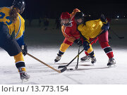 Купить «teen ice hockey sport  players in action», фото № 13773154, снято 25 июня 2019 г. (c) PantherMedia / Фотобанк Лори